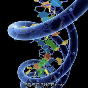 the risks of genetic engineering The 4 cons of genetic engineering the following are the issues that genetic engineering can trigger: 1 may hamper nutritional value genetic engineering on food also includes the infectivity of genes in root crops.