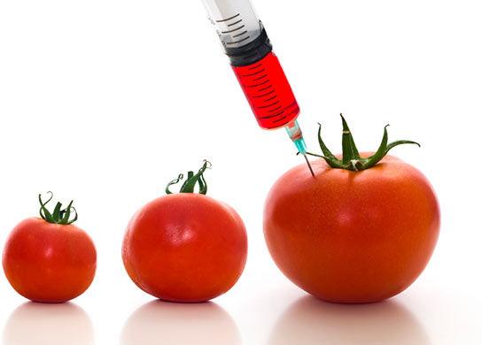 food consumer