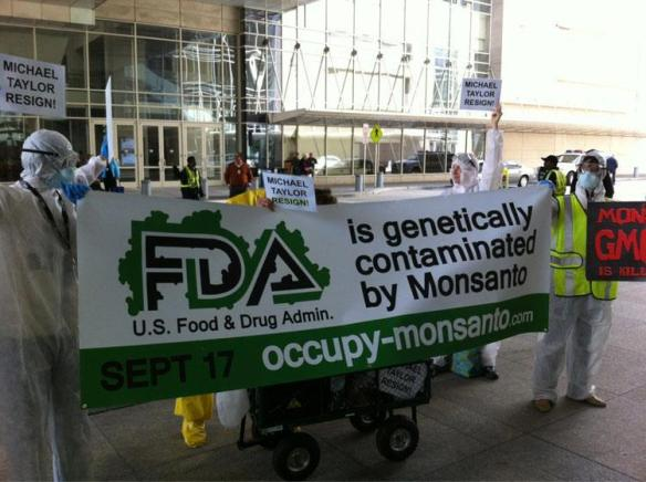 FDA genetically contaminated Monsanto GMO