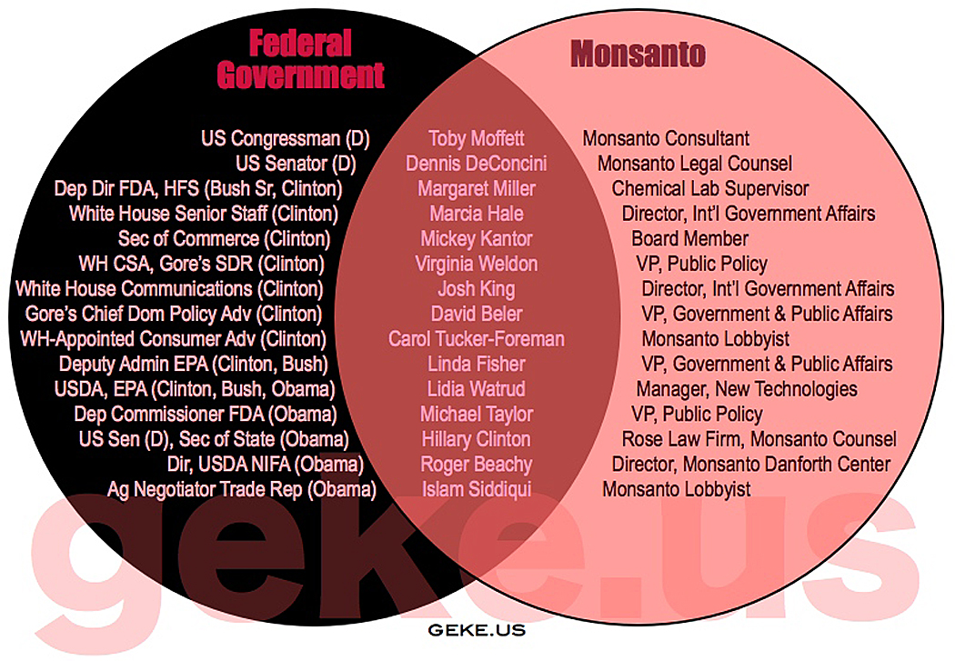 the issues of the gmo in the food industry of the united states of america The agriculture and food production industry employed more than one billion  united kingdom united states  these 10 companies control the world's food.
