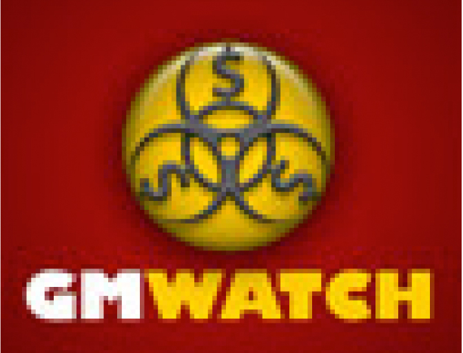 GM Watch