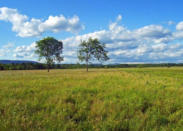 Grasslands_Shawangunk_NWR