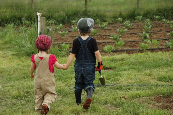 Kids on farm