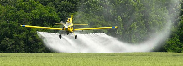 spray pesticides wheat