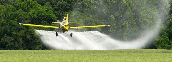 spray pesticides wheat